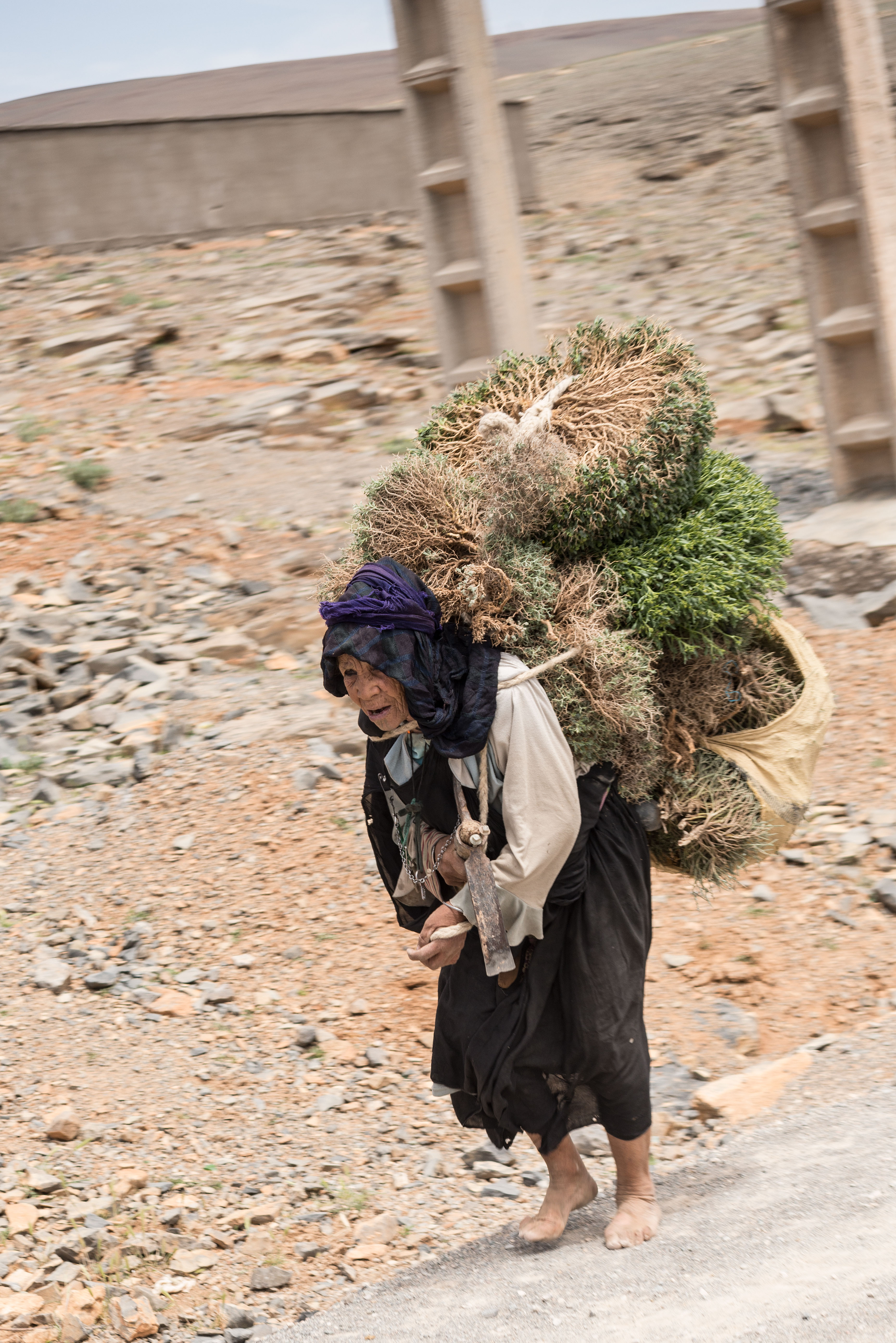 desert-woman