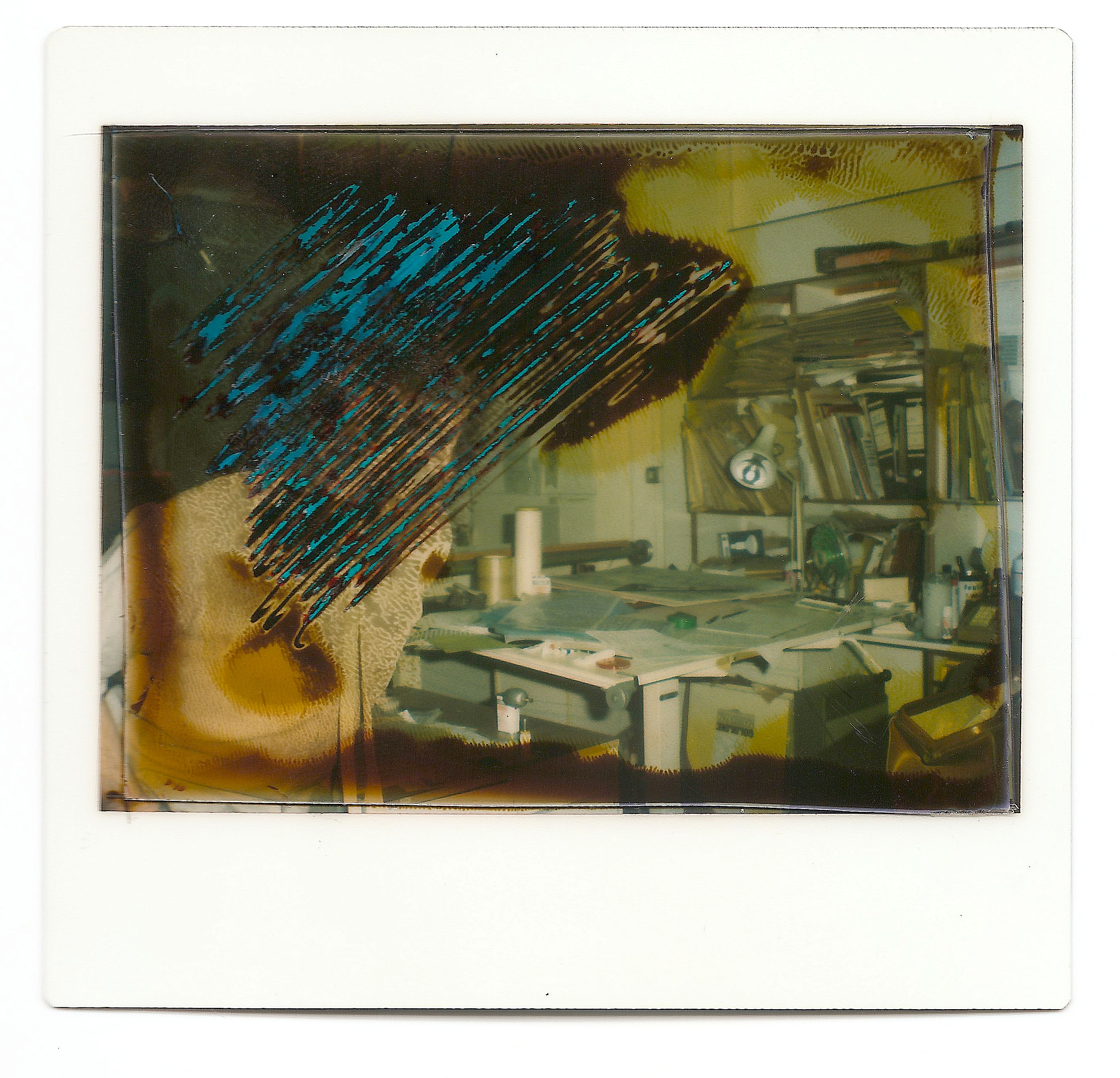 The polaroid - A temporary image